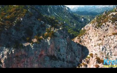 Das Sommer fängt offiziell an und Wir gehen Wandern! (VIDEO)